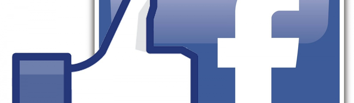 Facebook Hugo Bol